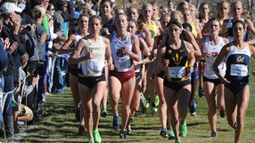 <p>2013 Pac-12 Cross Country Championships - Women's Race</p>
