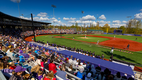 Baseball_Husky_Ballpark.png