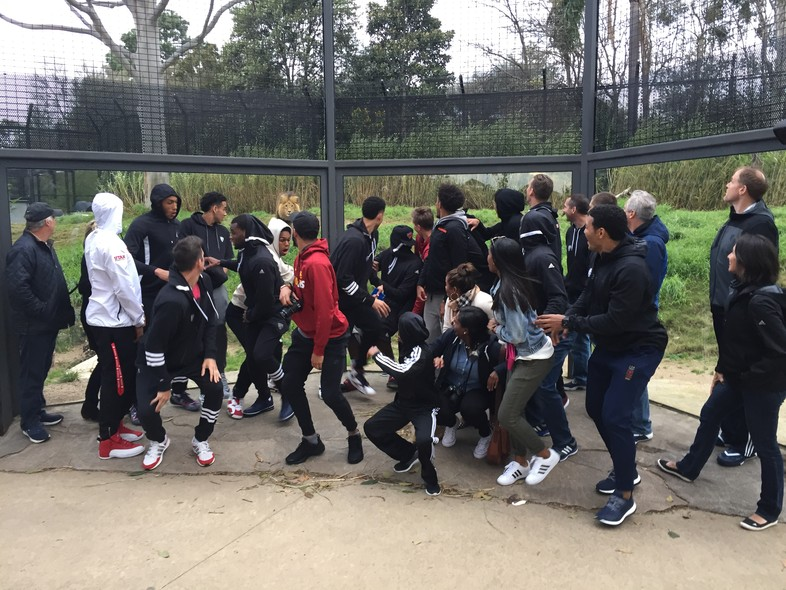 Pac-12 All-Stars have fun at the Melbourne Zoo