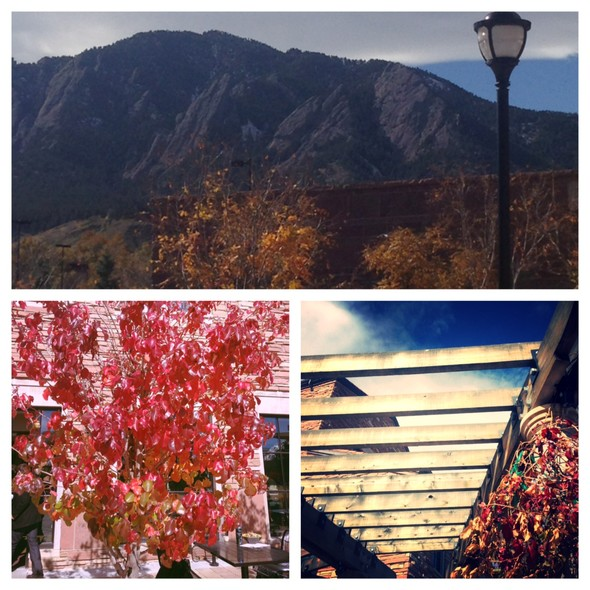 """<p>No better view &amp; best food on the CU campus! Find bibs and bring to the<a href=""""https://twitter.com/pac12"""" target=""""_blank"""">@pac12</a>XC Championships for a prize!<a href=""""http://pac12.me/1ipA9b0"""" target=""""_blank"""">http://pac12.me/1ipA9b0</a><wbr></wbr><a href=""""https://twitter.com/search?q=%23pac12xc"""" target=""""_blank"""">#pac12xc</a></p>"""