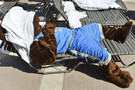 Photos: March Madness hits the pool