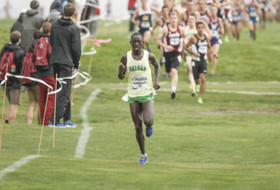Oregon's Edward Cheserek wins second straight Pac-12 cross country title