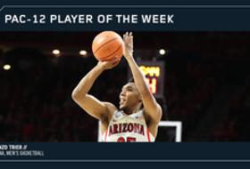 Pac-12 men's basketball player of the week Allonzo Trier, Arizona 11/13/17