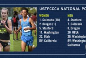 USTFCCCA poll 10-3-17