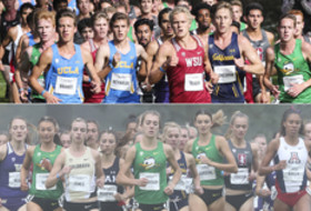 2017 NCAA Championships preview