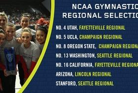 Pac-12 gymnastics teams to compete in NCAA regionals