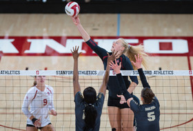 Plummer named top freshman, 10 tabbed volleyball All-Americans