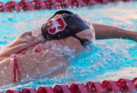 Roundup: Katie Ledecky continues to break records