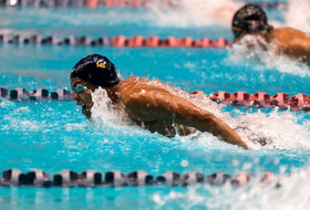 2018 Pac-12 Swimming (M) Championships: California extends team lead, winning two thirds of Day 3's events