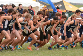 2014 Colorado men's cross country