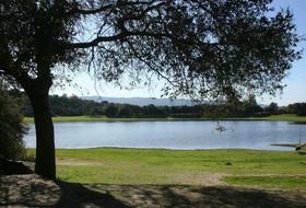 ASU'S Ashmore, Stanford Women's Rowing Winners of 2010 Pac-10 Sportsmanship Award