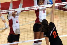 Volleyball Greenshirt Zimmerman Named Fab 50