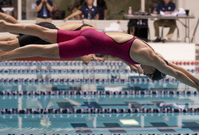 Women's swimmers and divers gear up for NCAA Championships