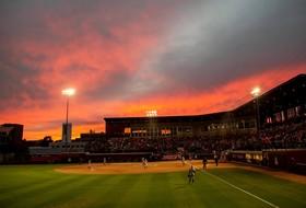 Arizona Softball to Open Fall Ball on Wednesday