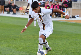 Cal Falls To Oregon State Golden Goal