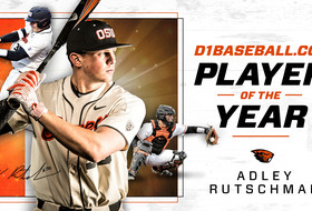 Rutschman Named D1Baseball.com's Player Of The Year