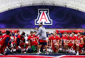Building the A Series: The Stories of our Wildcats