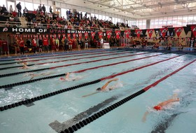 Utes Ranked No. 22 in CSCAA Poll