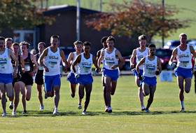 Brandt, Rice Lead UCLA at Pac-12 Championships