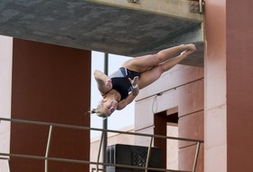 Cats Win Championship at Day Two of NCAA Zone E Diving