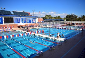 Arizona Swim and Dive to Host Annual Red-Blue Scrimmage on Saturday