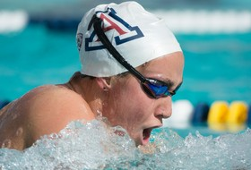 Arizona Diving and Women's Swimming to Compete at Pac-12 Championships