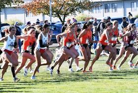 Ten Beaver Runners Represented on Pac-12 Honor Roll