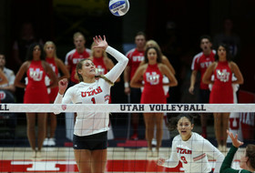 No. 16 Volleyball Falls Against No. 6 Pittsburgh, 3-1