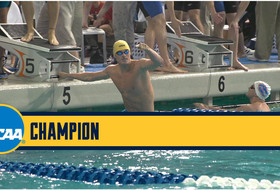 Cal Wins NCAA 200 Free and 400 Medley Relays