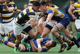 Cal Hosts 'Cup' Opener Saturday vs. UBC
