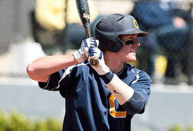 Golden Bears Performing Well in Minor Leagues