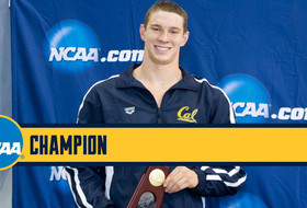 Cal Wins 200 Medley Relay, Murphy Takes 100 Back Title at NCAAs