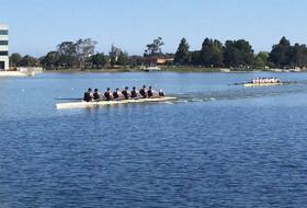 No. 2 Cal Crew Sweeps No. 8 Boston University at Redwood Shores