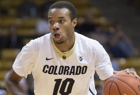Brooks: Boyle's Buffs Set To Cope With Moby Madness