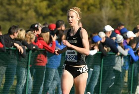 Scholl Striving For Excellence In Final Cross Country Season