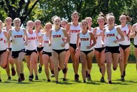 Utah Cross Country Named USTFCCCA All-Academic Team, Two Earn Individual Honors