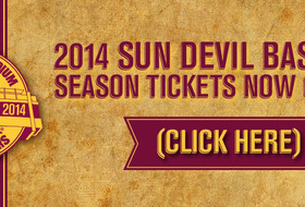 Baseball Unveils Official Logo To Commemorate Final Season At Packard Stadium