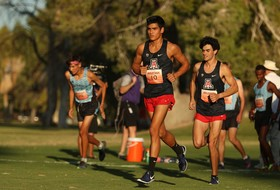 Cats, Villarreal Named USTFCCCA Cross Country All-Academic