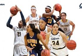 Bears Begin WNBA Training Camp