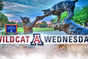 Wildcat Wednesday - Action-Packed Spring In Full Swing