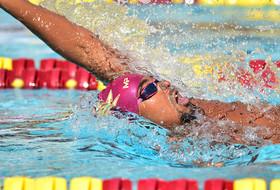 Swim & Dive Faces Biggest Challenge at Stanford, Cal