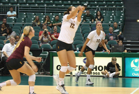 No. 25 Volleyball Upsets No. 17 Hawaii, 3-0