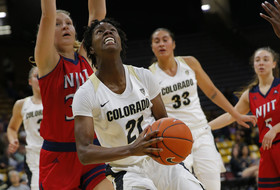 Hollingshed Leads Buffs in Opening Win