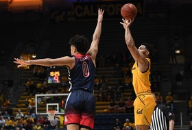 Bears Can't Keep Pace With Arizona In Loss