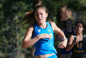 Bruin XC Set for Final Tune-Up Before Postseason Action