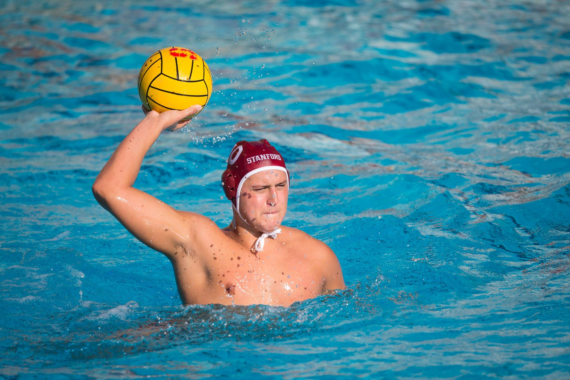 Ucla mens water polo